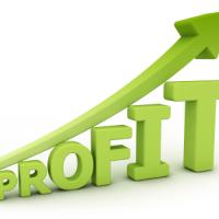 surfingthepips profit